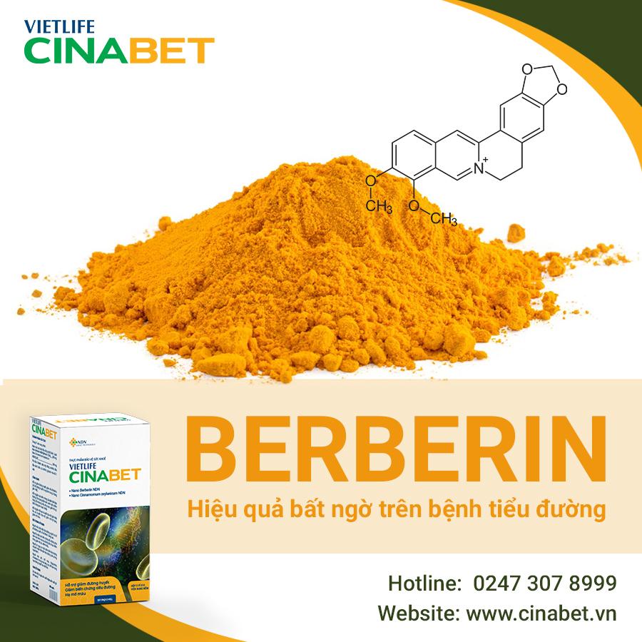 Bằng chứng về hiệu quả của Berberin trong việc ổn định mỡ máu 1