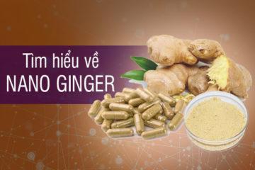 Nano Ginger là gì? Nano ginger có tác dụng gì?