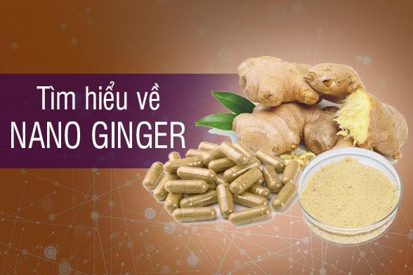 Nano Ginger là gì? Nano ginger có tác dụng gì? 1